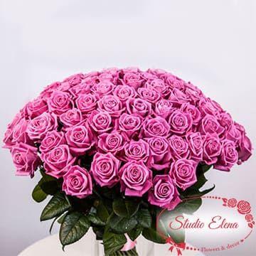 Яркие розовые розы — 77 нежных поцелуев