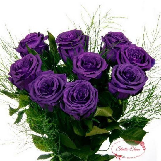 Фіолетові троянди - Фіалока
