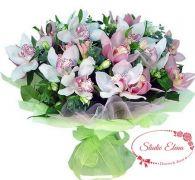 11 нежно-розовых орхидей с зеленью — Брауни