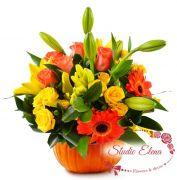 Букет цветов в тыкве — Пампи