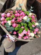 Кущова троянда Леді-Бомбастік