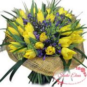 Букет тюльпанов — Монако