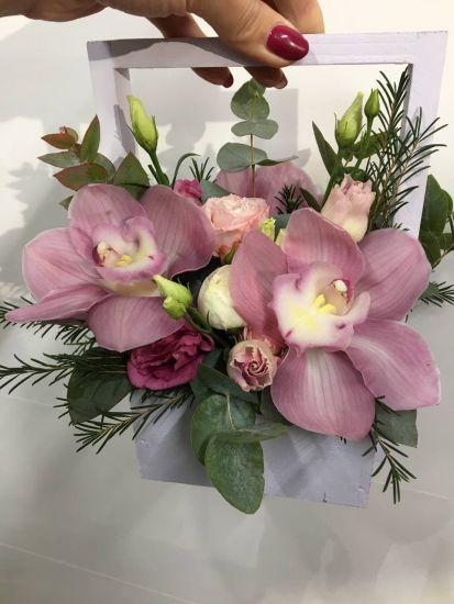 Ящик з орхідеї