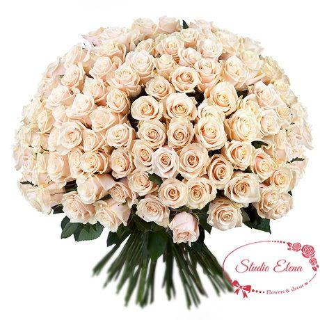 Букет з 101 кремовою троянди кольору пудра - Альфрад